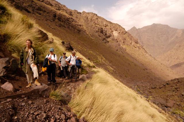 Region du Toubkal, Maroc Photo du catalogue crŽer comme reference pour le Parc National du Toubkal Photo by Alan Keohane www.still-images.net